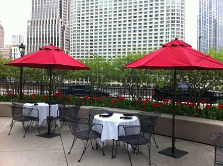The Palm Restaurant - Chicago Top 10 Steakhouse