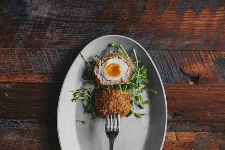 Lone Wolf best german restaurants in chicago;