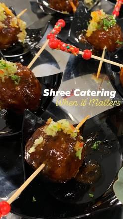 Shree Restaurant best greek in chicago;