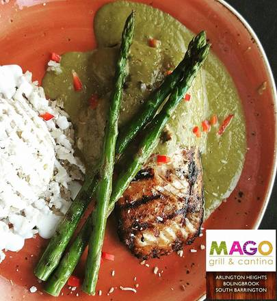 Mago Grill and Cantina best greek in chicago;